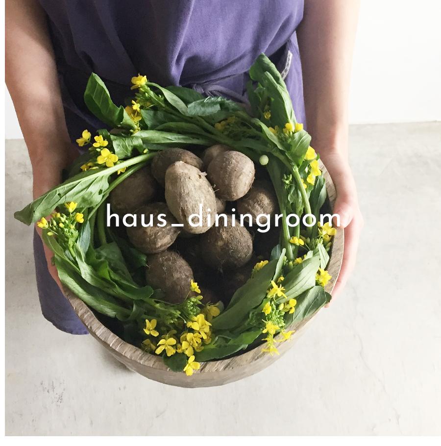 haus_diningroom